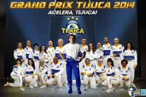 Unidos da Tijuca - Logo do Enredo - Carnaval 2014
