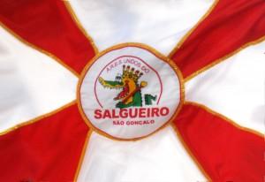 Unidos do Salgueiro - Bandeira