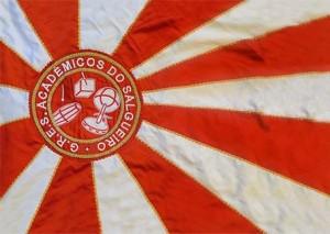 Acadêmicos do Salgueiro - Bandeira